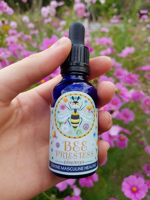 Bee Priestess Essences 'Divine Masculine Healing' 30ml