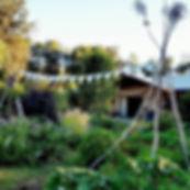 bee garden.jpg