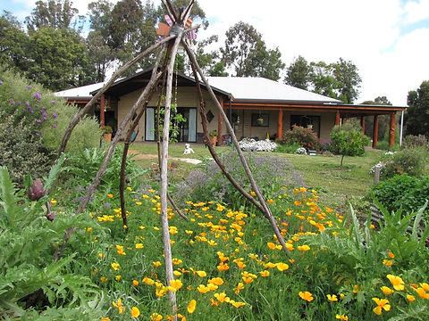 Eco Home, native bees, sustainable living, insectary garden,