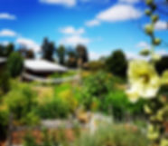 healing garden naturopathy greenbushe