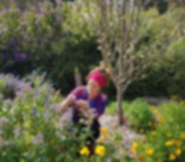 healing garden naturopathy consult