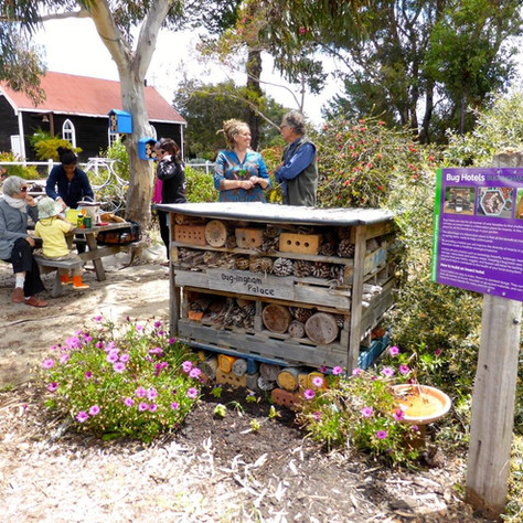 Greenbushes Community Garden