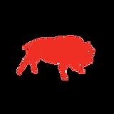 Buffaload Logistics Ltd.