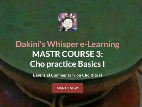 MASTER COURSE 3 - Chö Practice Basics I