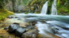 Salmon-Creek-Falls-Willamette-National-F