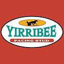YIRRIBEE STUD.jpg