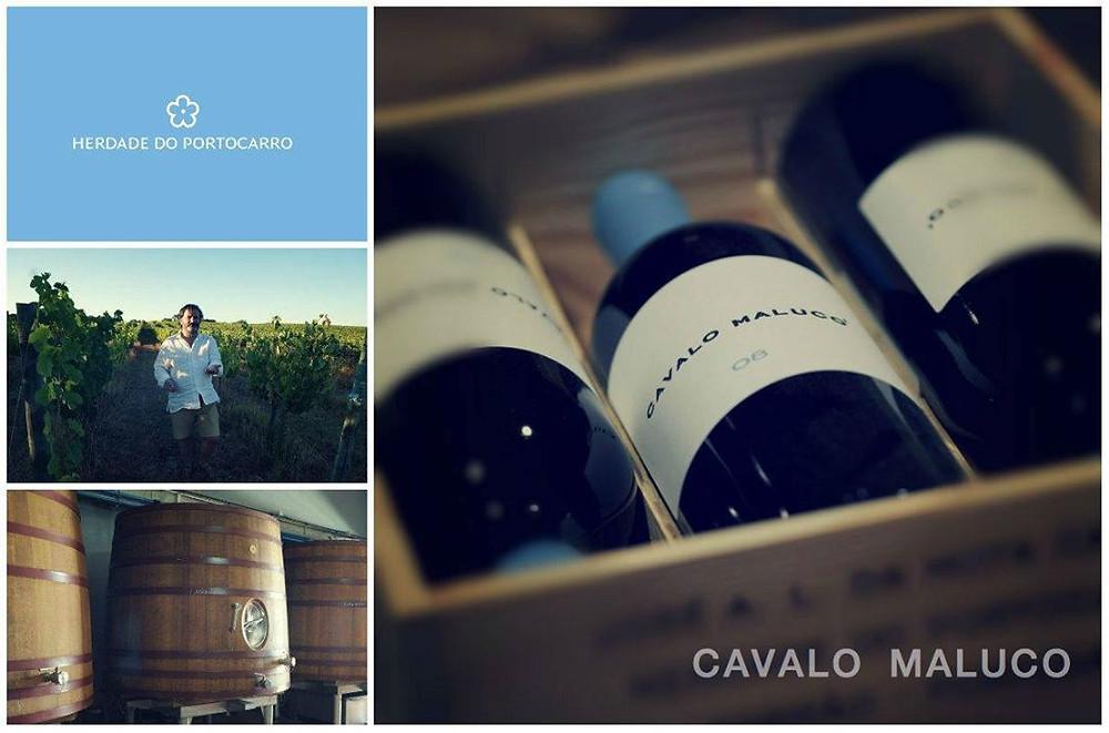 sommelier_lisbon_wine.jpg
