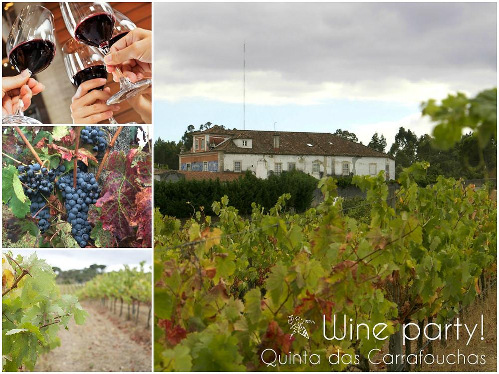 Sommelier Lisbon wine tasting