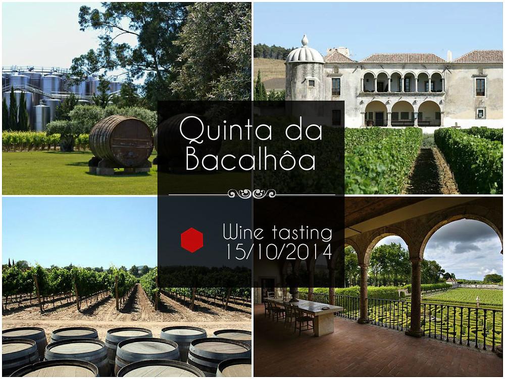 Quinta da Bacalhôa with Sommelier Lisbon