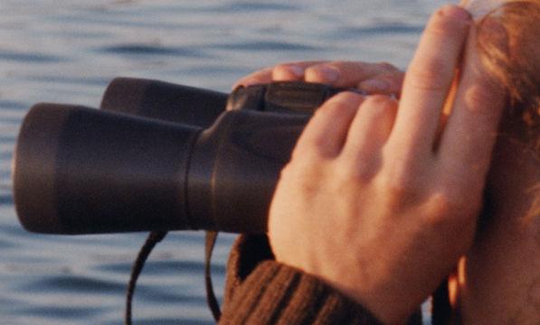 8-binoculars.jpg