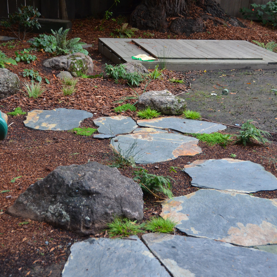 planted rain garden, stepping stones keep feet dry