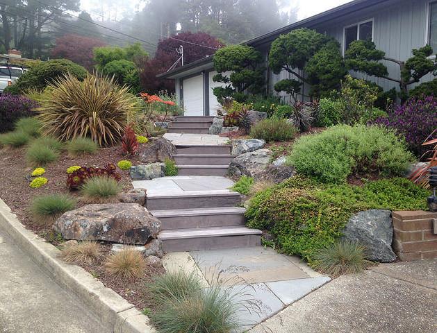 mid-century modern garden entry