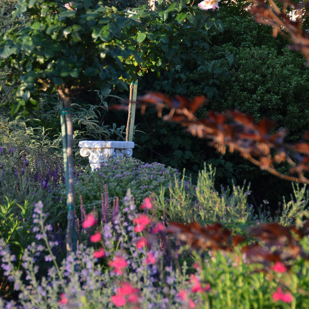 formal elements within informal plantings
