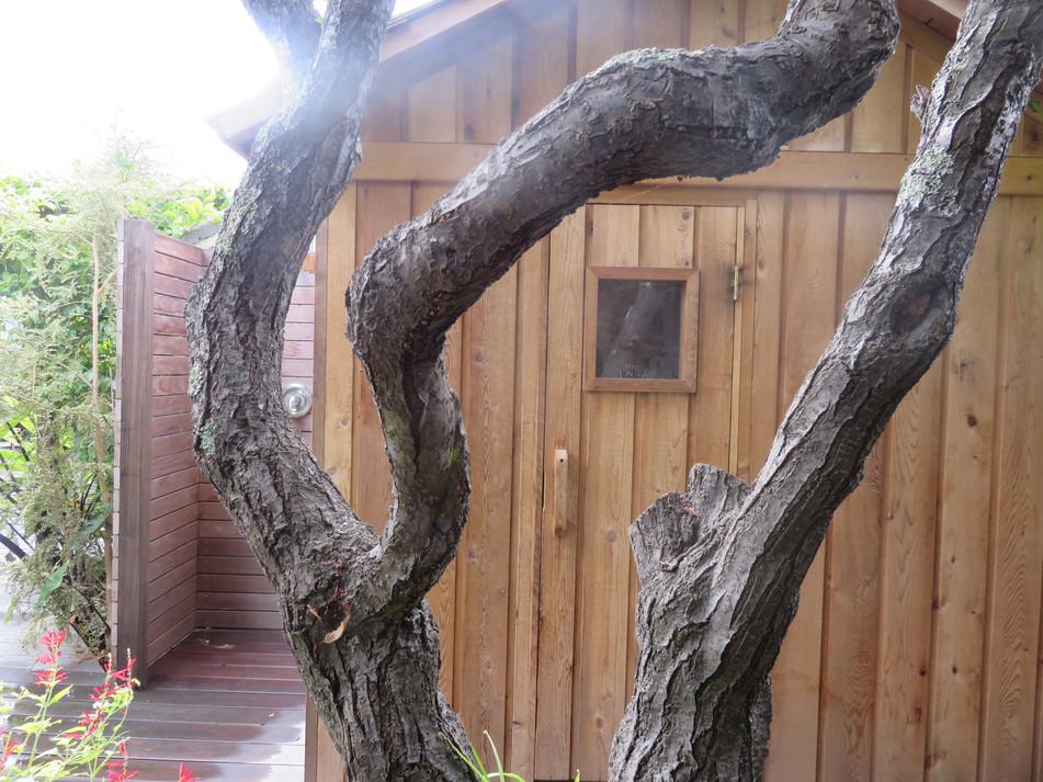 sauna and outdoor shower nook