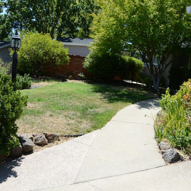 a 'before' view of front path