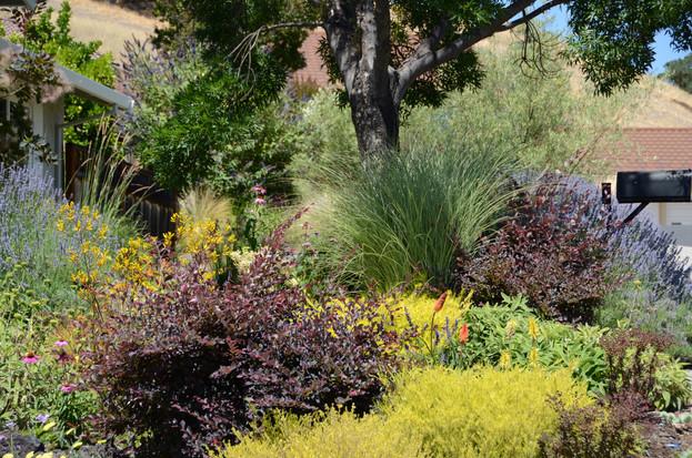foliage composition