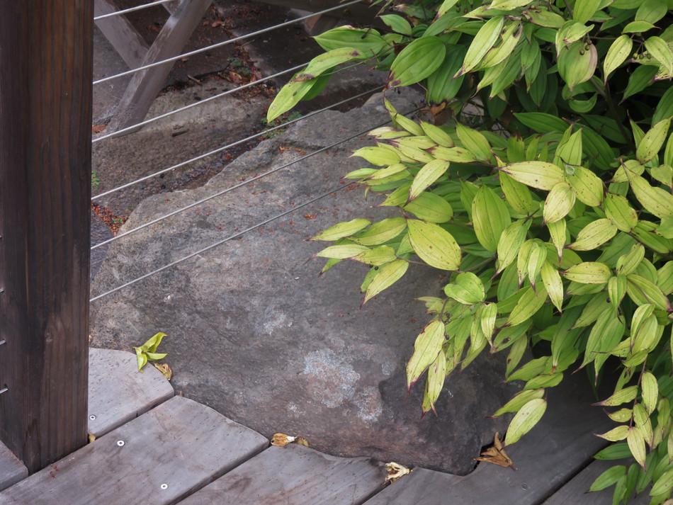 deck & boulder detail
