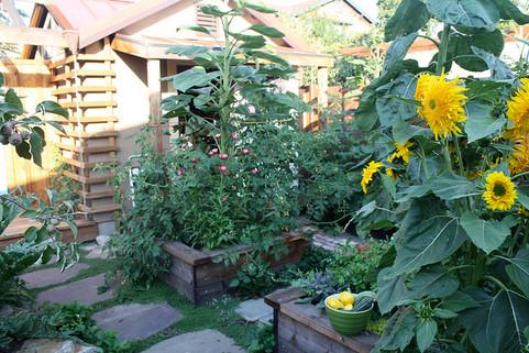 seasonal garden rooms