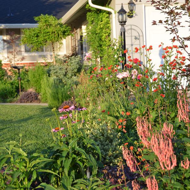 plants lead the eye to front door