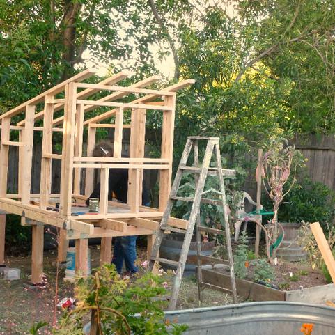 framed coop structure