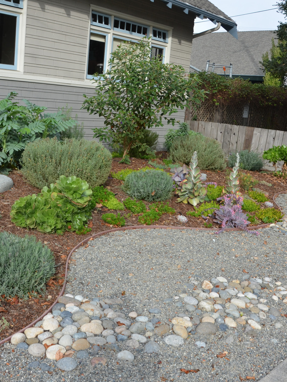 low maintenance curb appeal, north berkeley