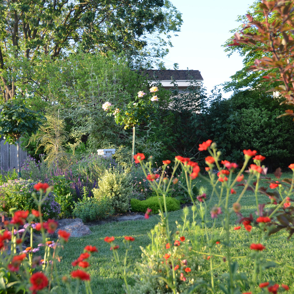 pollinator garden changes with the seasons; click for more views