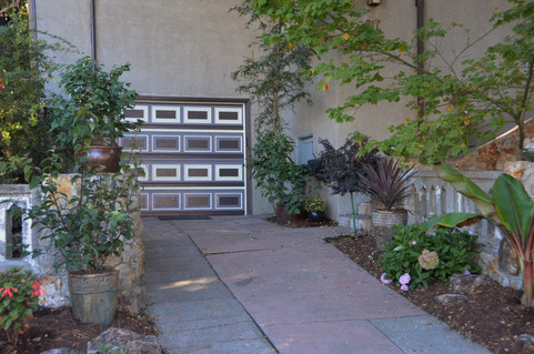 new driveway plantings