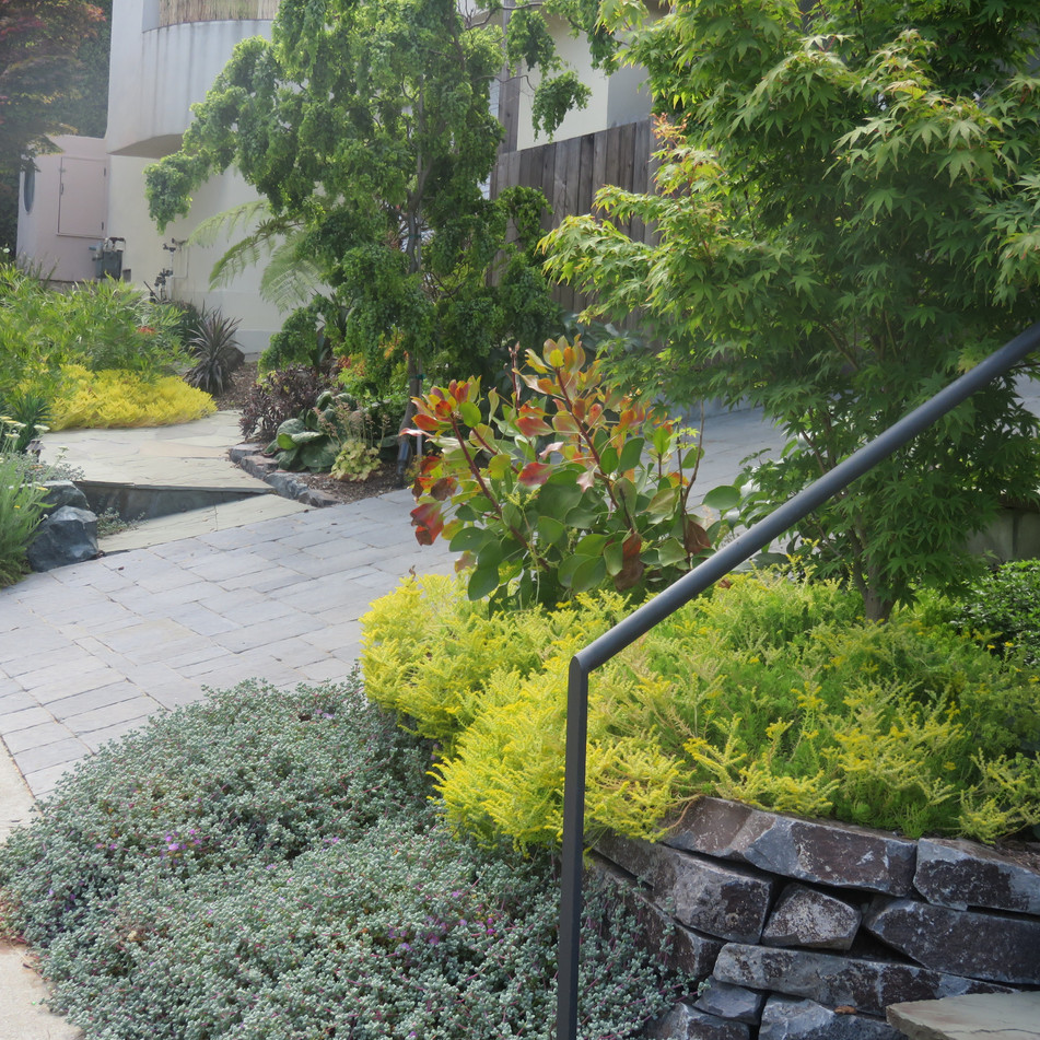 dry stacked stone walls with sedum groundcovers