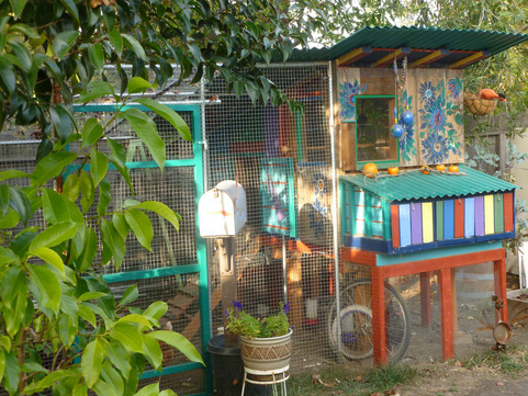 housing chickens