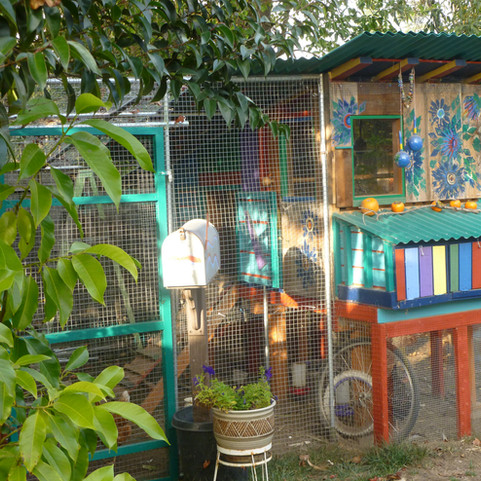 covered nesting boxes and run entry