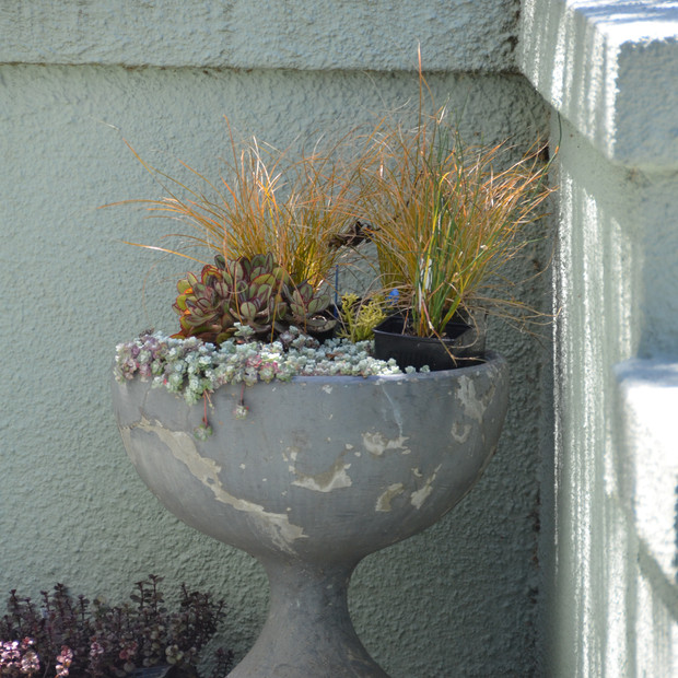 a planter adds a piece of history