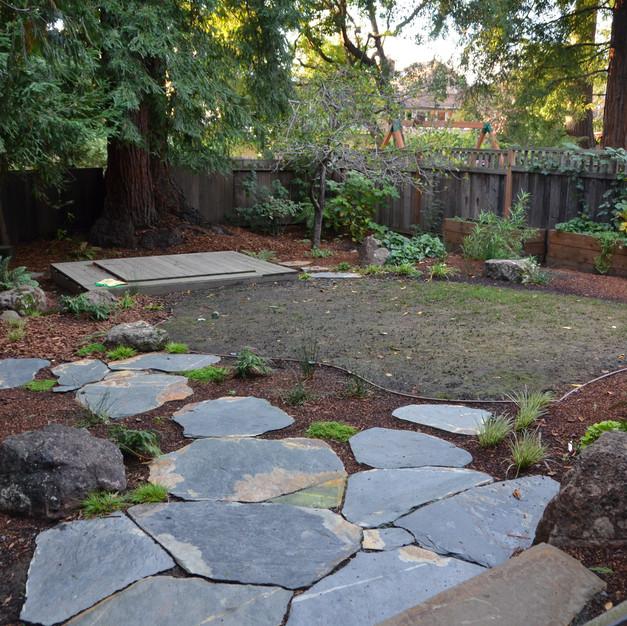 planted rain garden & seeded lawn area