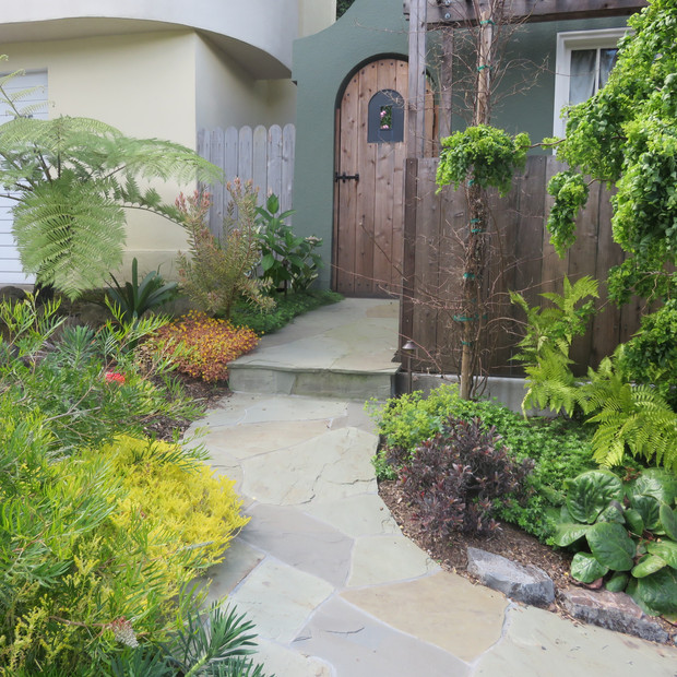 plant lined walk to side gate, flagstone on concrete