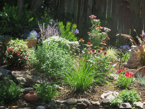 part shade pollinator spot