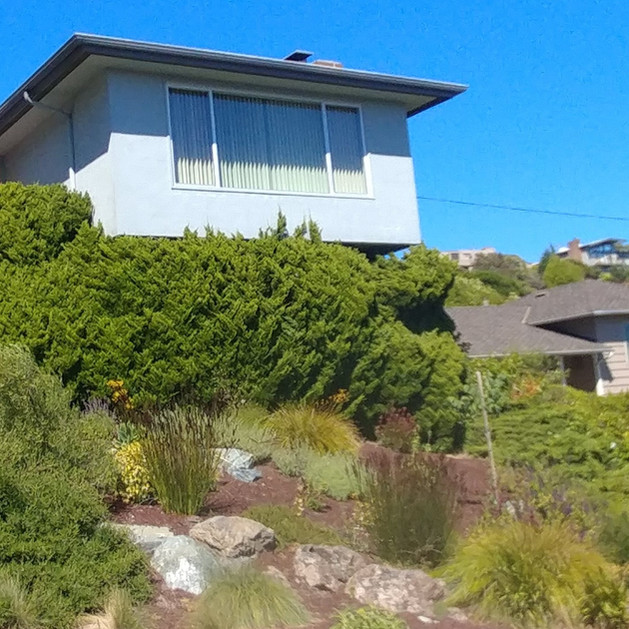 curb appeal & natural drainage