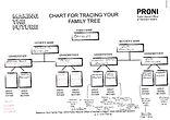 3. Ali - Family Tree.jpg