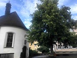 Berneck (SG)