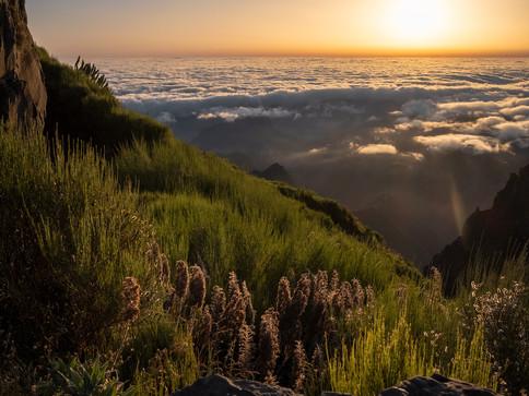 Sonnenaufgang am Pico Ariero