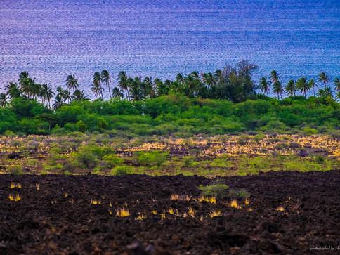 Big Island - Küste nahe Kona