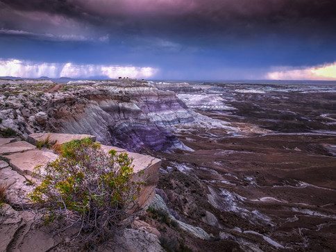Petrified Forest National Parc - USA