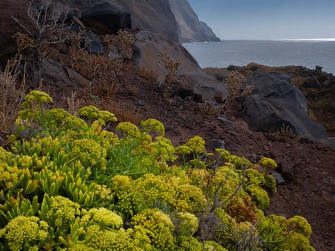 Praia de Garajau - Madeira