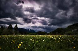 Wiese unter Gewitterwolken 2