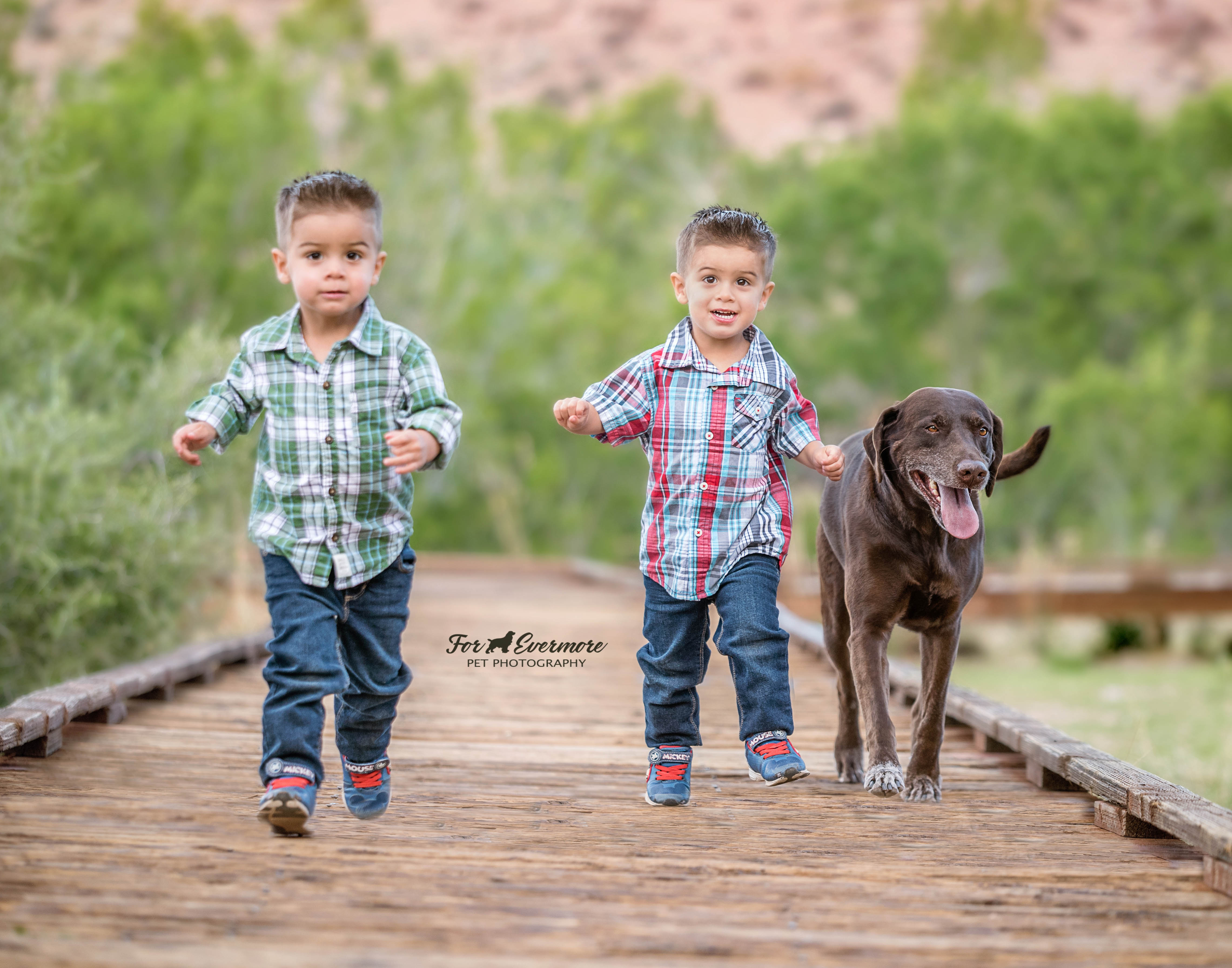 The boys and their dog