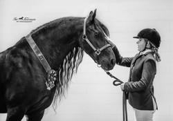 Horse and rider session from show
