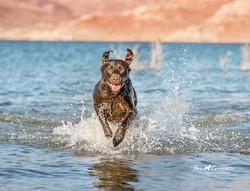 Dory fun at Lake