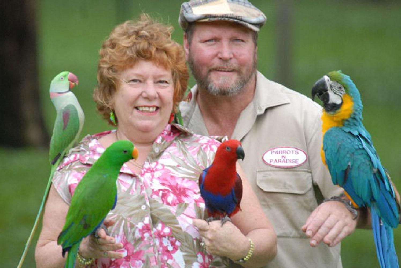 Dail, Mark & Birds