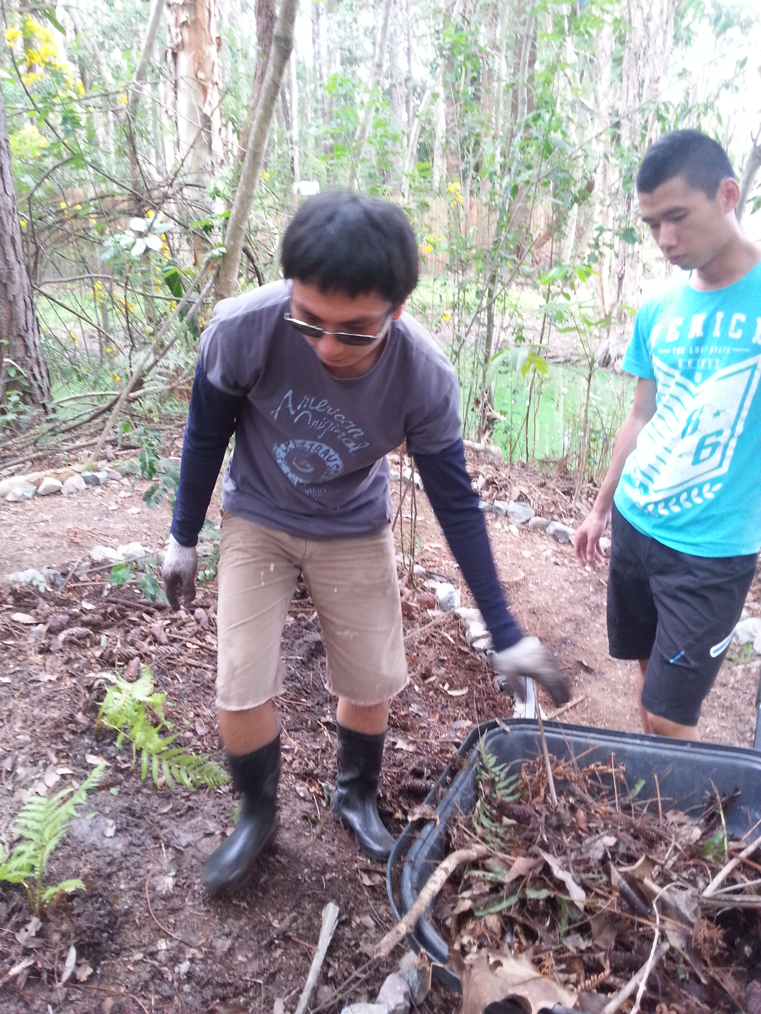Planting on the Island