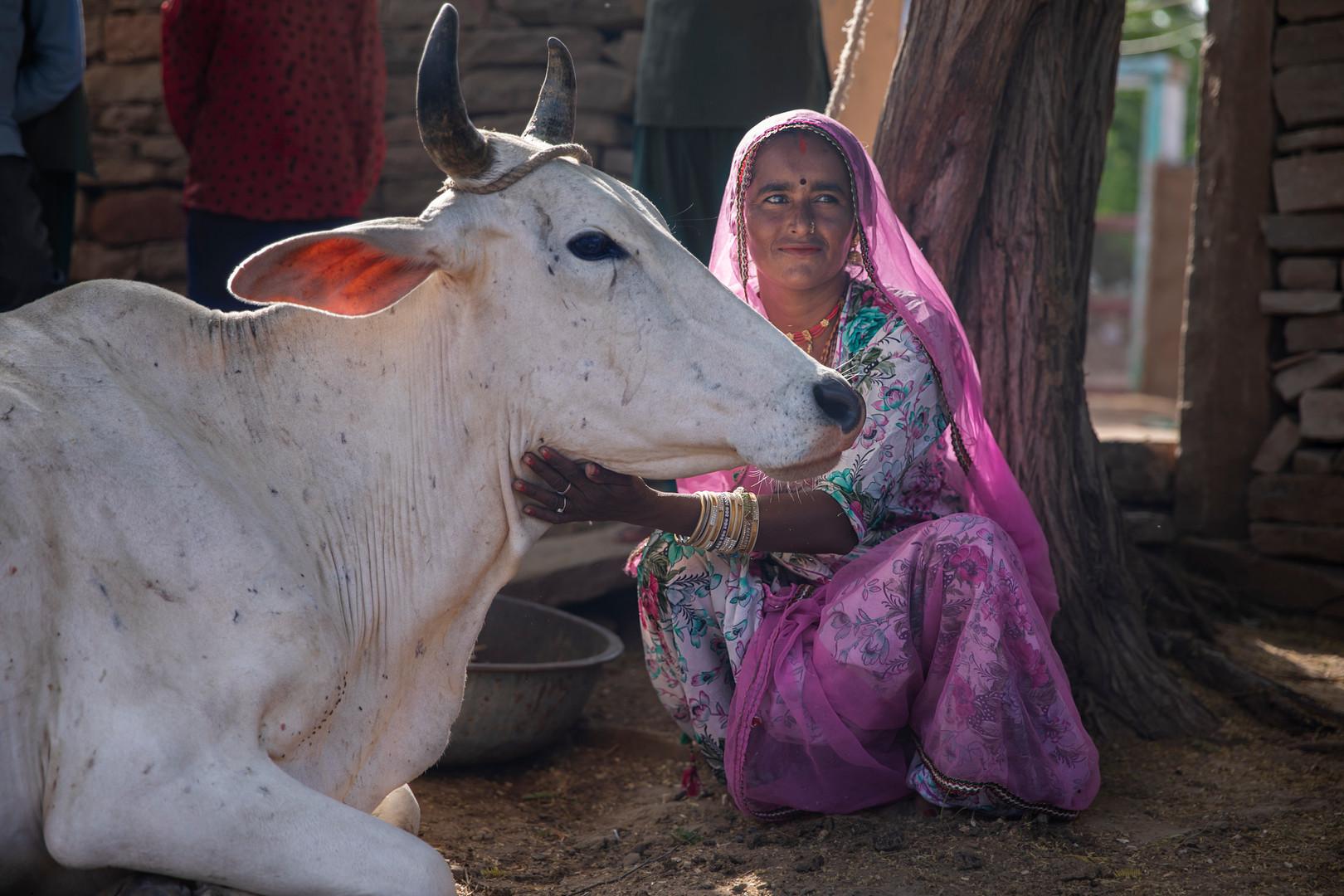 INDIA_00031.jpg