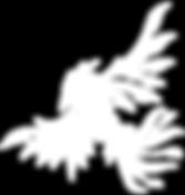Novocellars+Phoenix+-+White.png