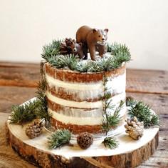 Layer cake forêt